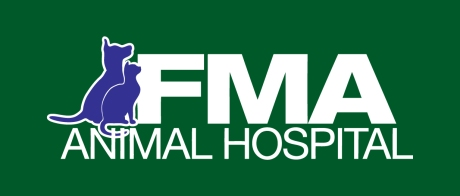 FMA_logo_color